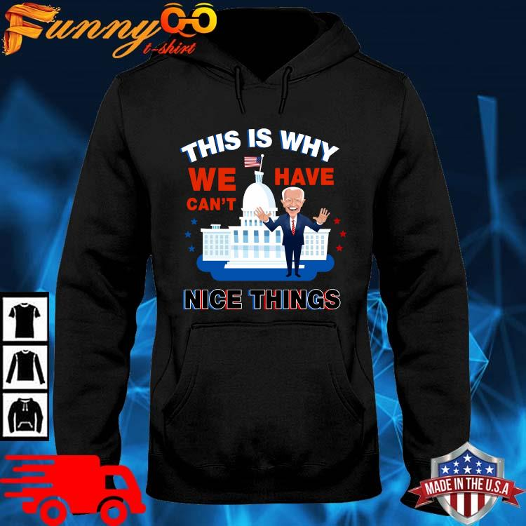 Joe Biden this is why we have can't nice things hoodie den